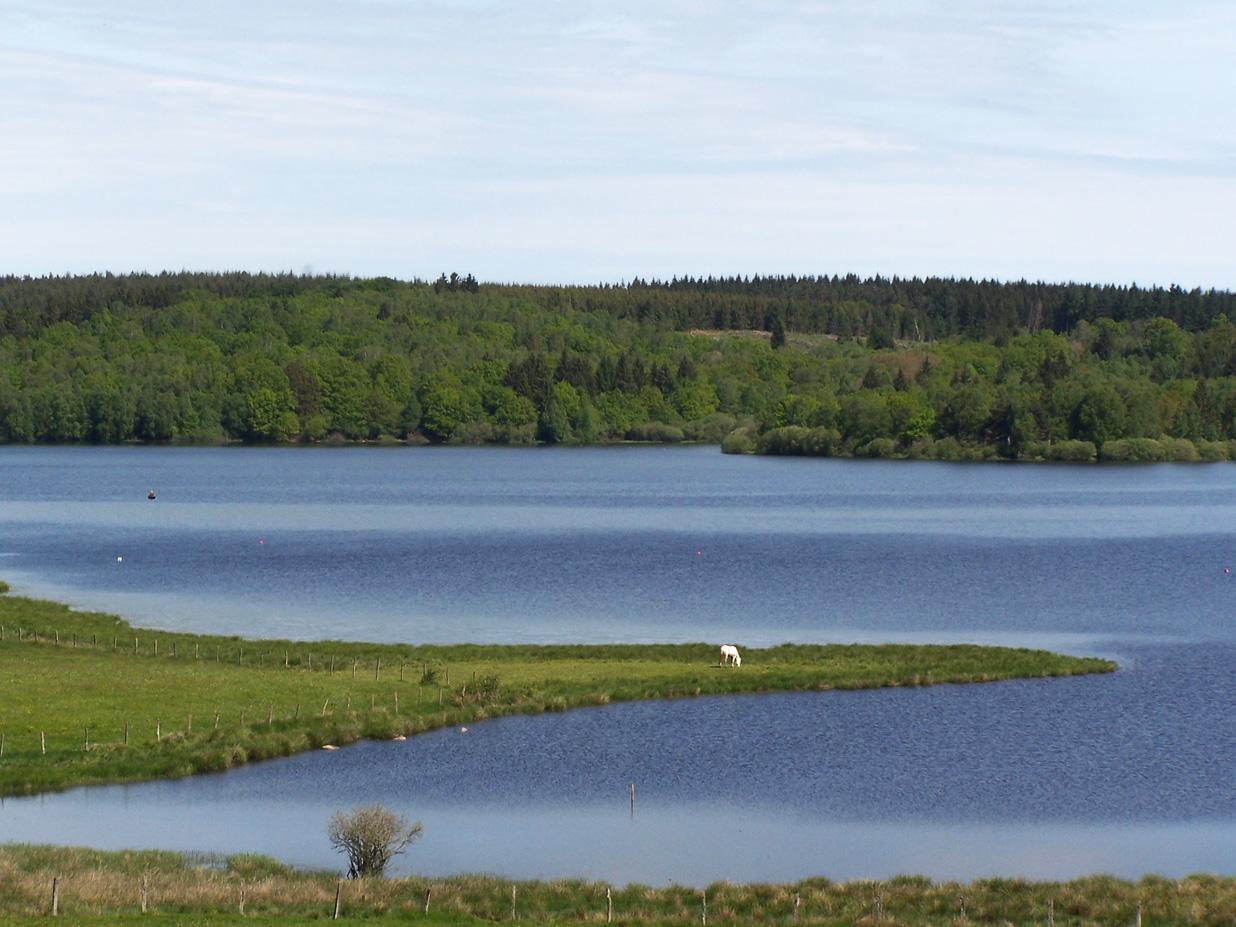 Lac de Saint-Agnan depuis la D226