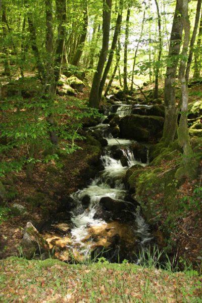 Eaux vives Morvandelles : Cascade éphémère