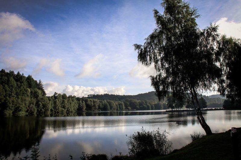 Lac de Chamboux : vue sur l'étang de la prée