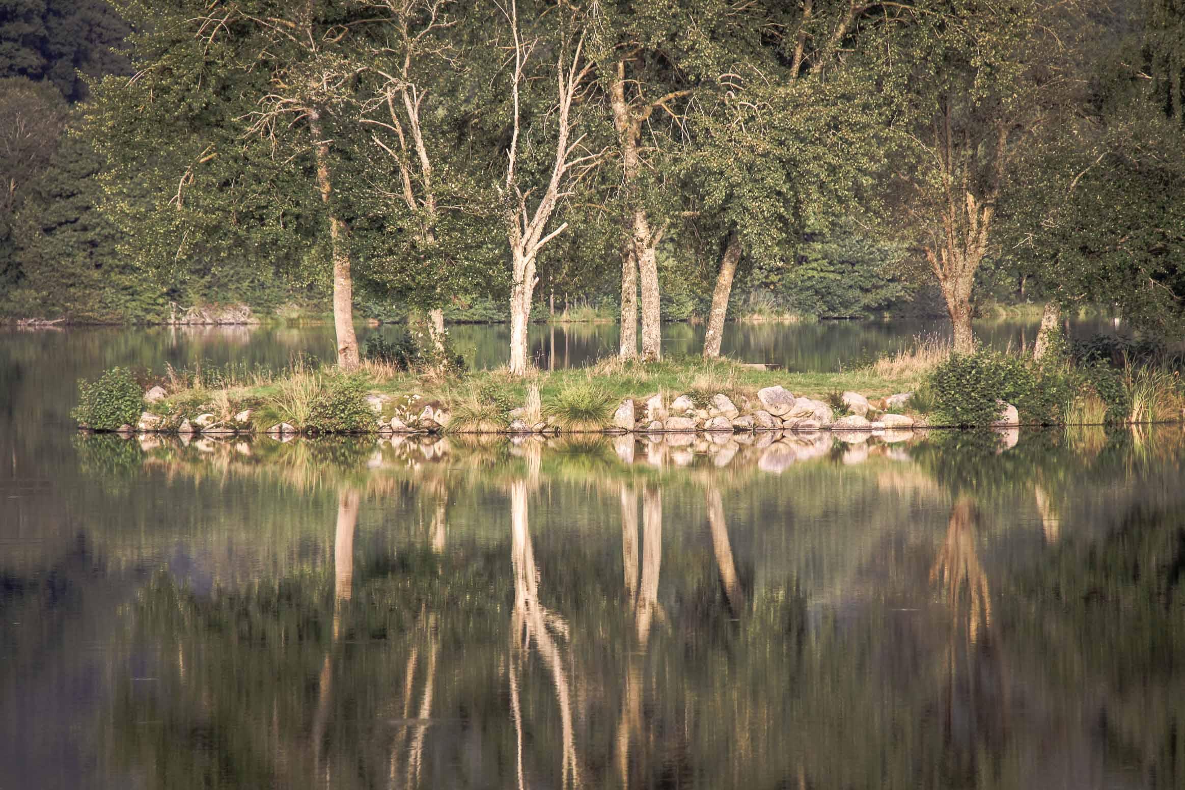 Lac de Chamboux : La presqu'île de l'étang de la Prée