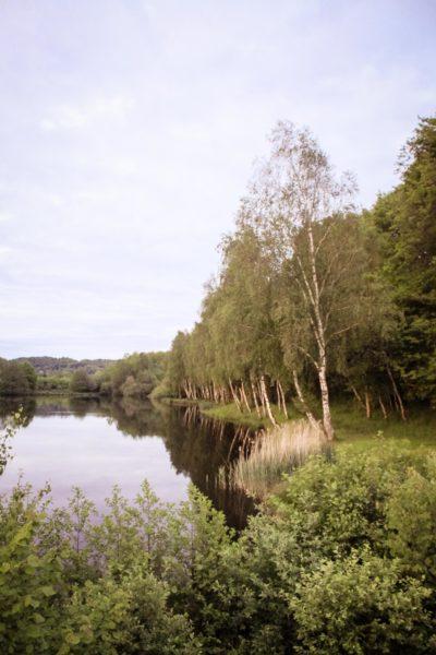 Lac de Chamboux : Etang de la Prée