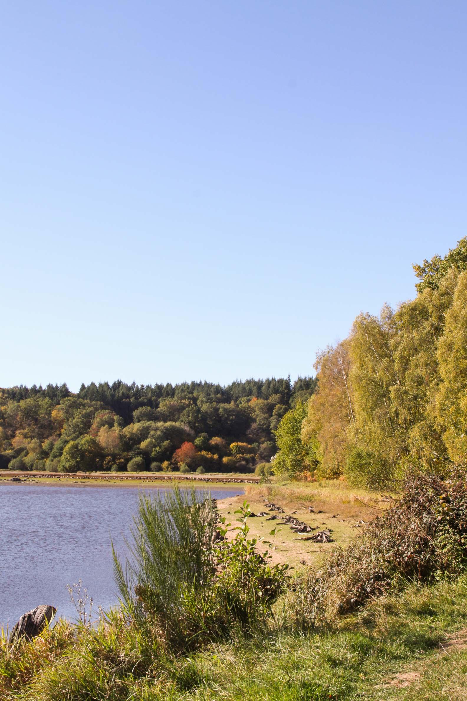 Lac de Chamboux : l'étang Guijon