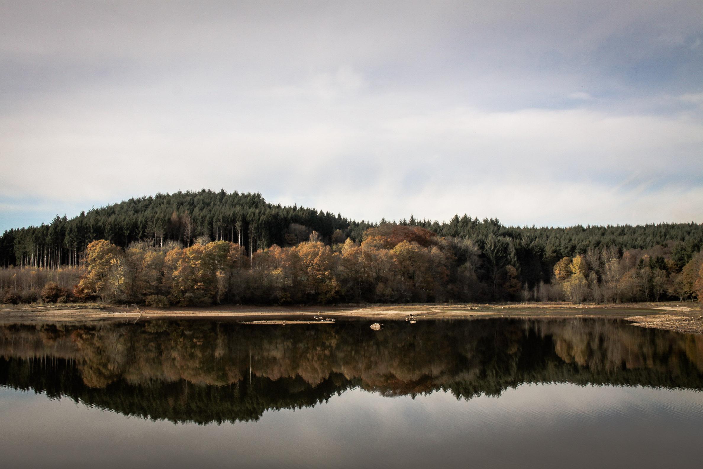 Lac de Chamboux : couleurs de début d'automne
