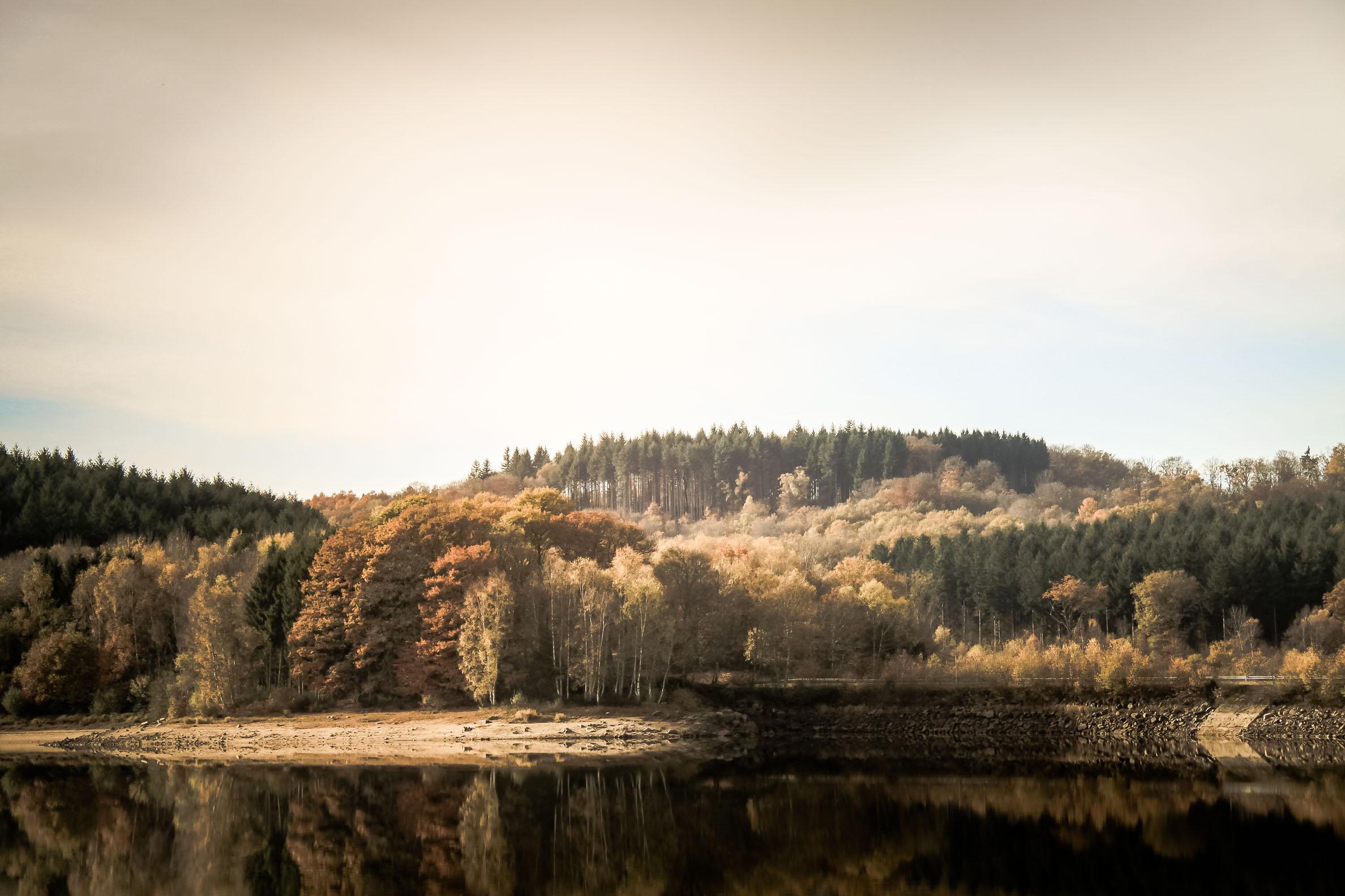 Lac de Chamboux novembre 2017