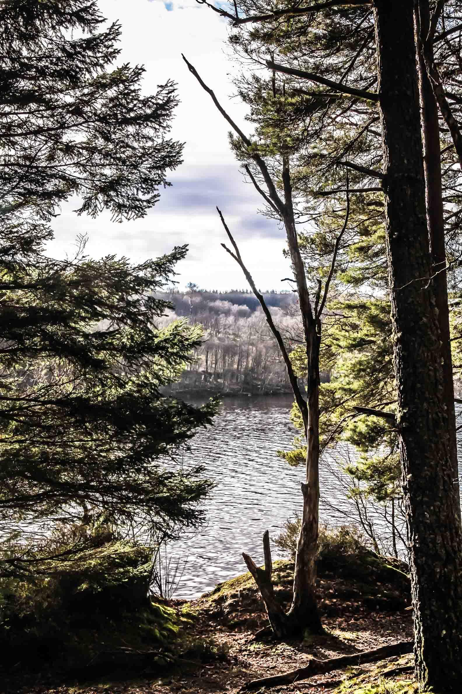 Sentier au bord du lac de Saint-Agnan vers le barrage