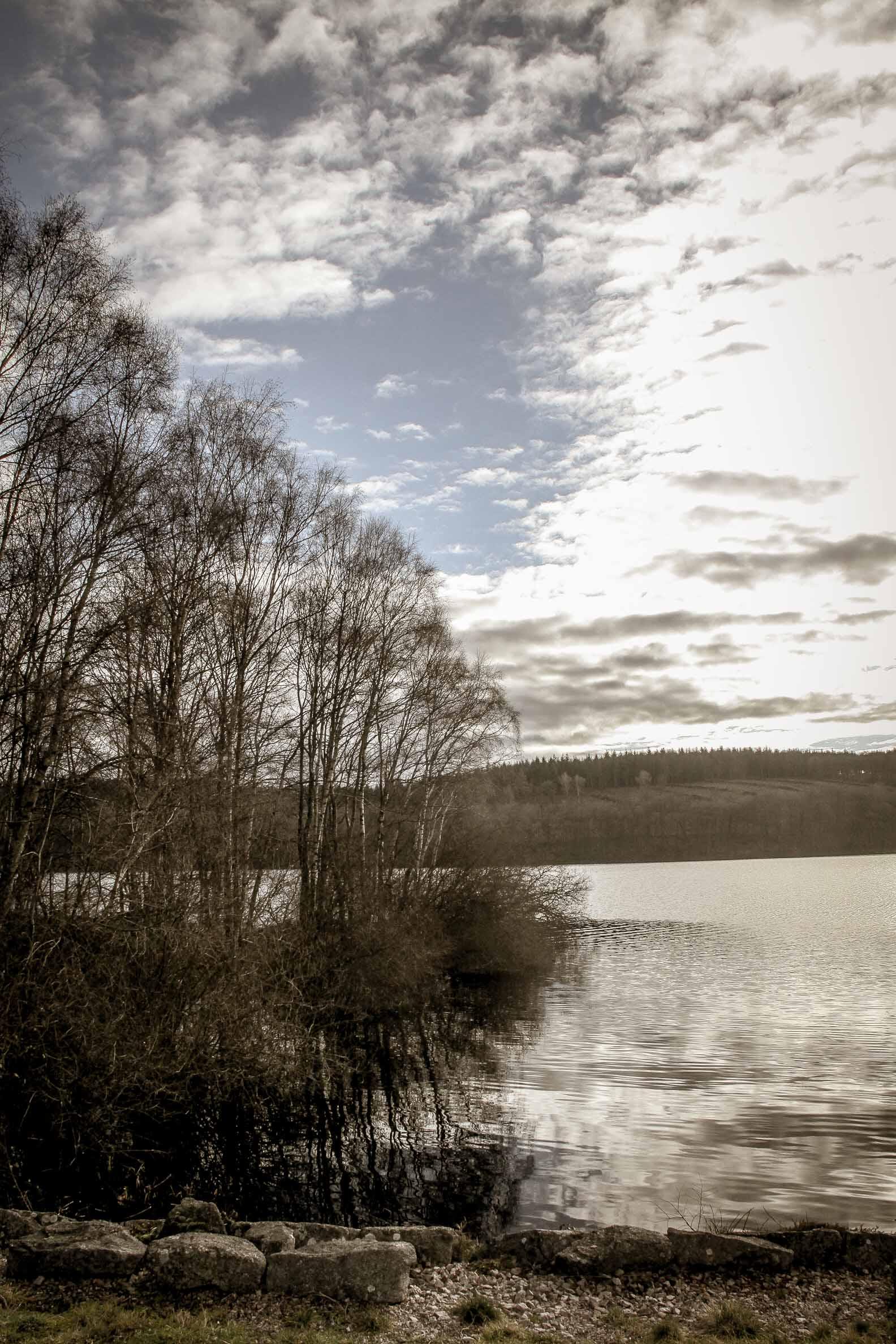 Lac de Saint Agnan coté barrage avril 2018
