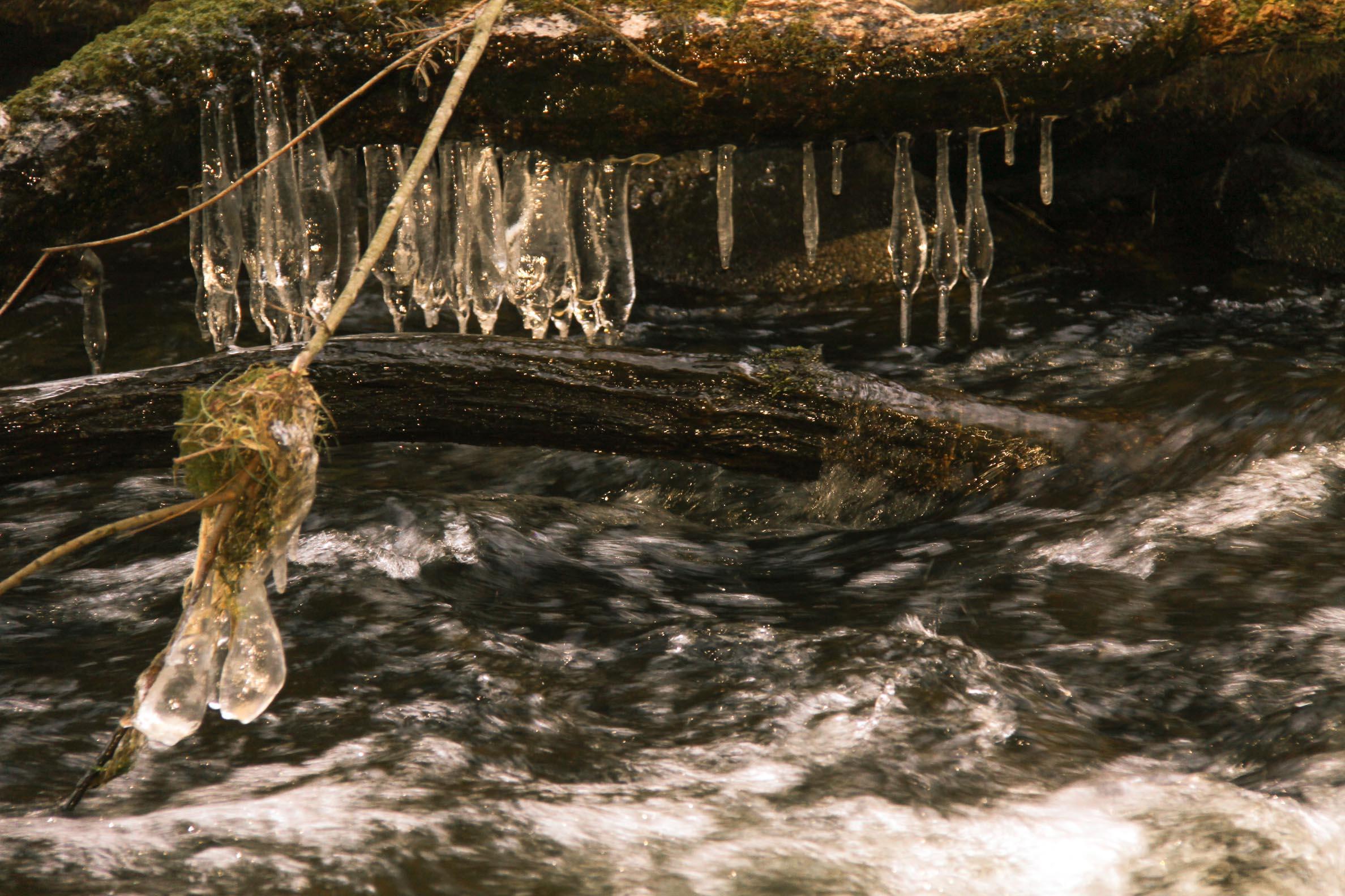 Nature insolite : Glace vers le Saut de Goulou (9)