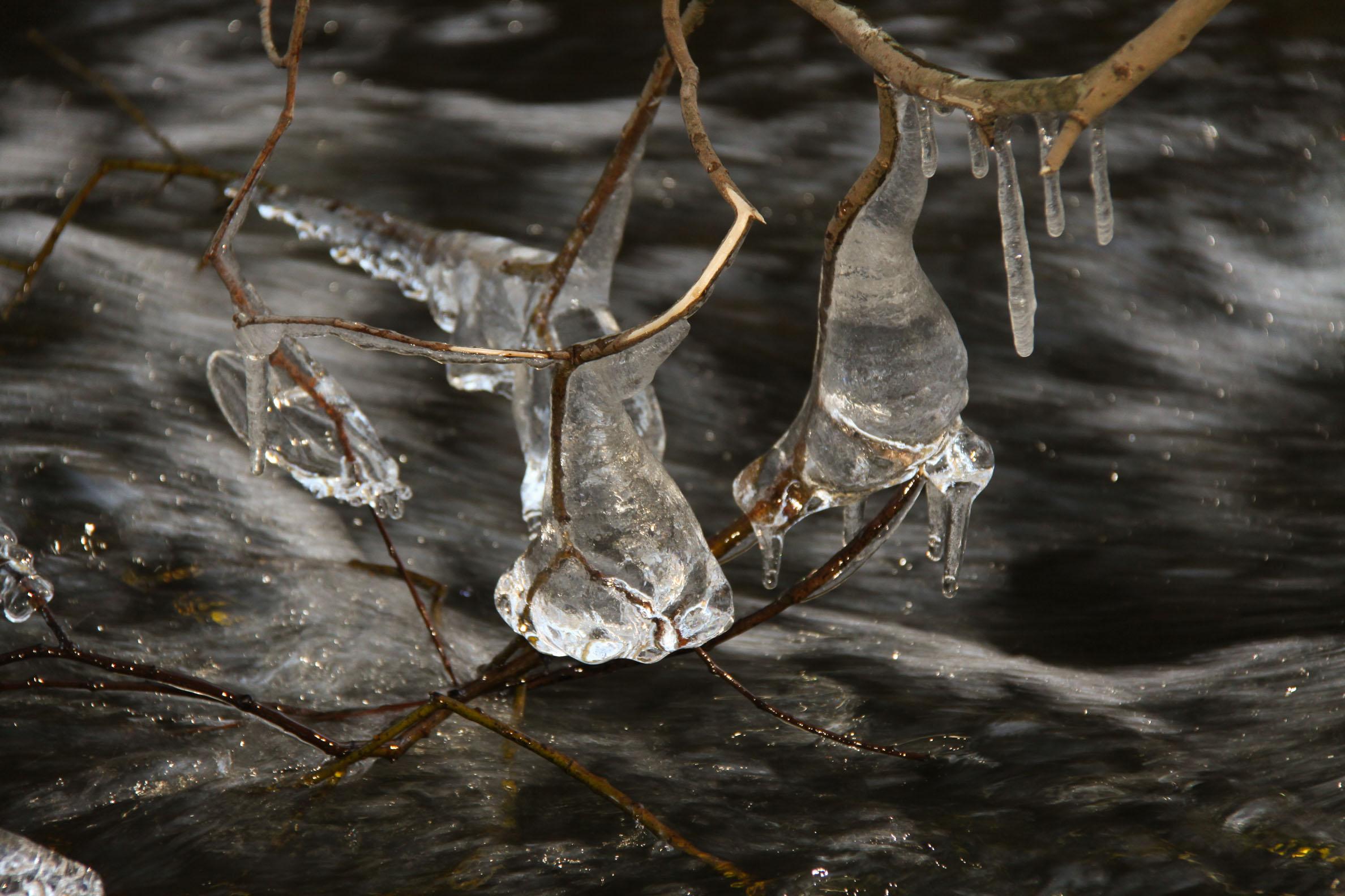 Nature insolite : Glace vers le Saut de Goulou (8)