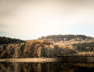 Grands lacs du Morvan : lac de Chamboux