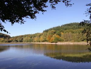 paysages du Morvan : Lac de Chamboux, début de l'automne