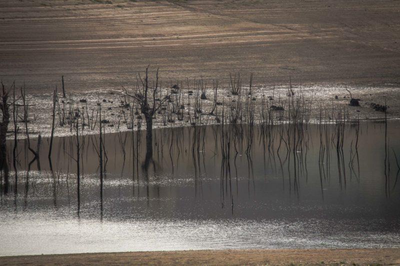 Lac de Pannecière en période hivernale (3)