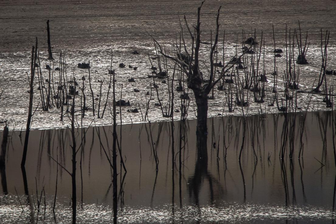 Lac de Pannecière en période hivernale (2)