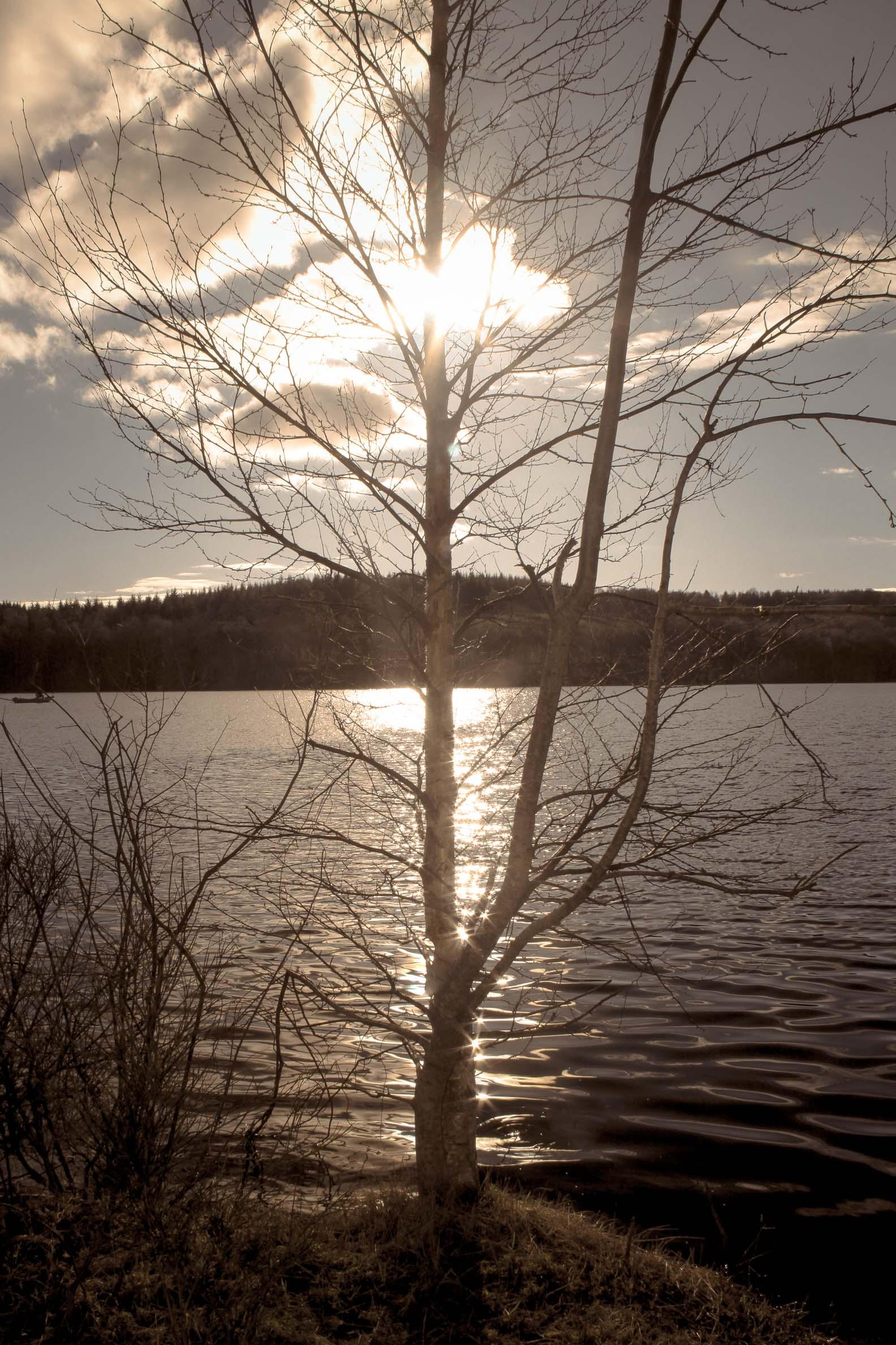 jeux de lumière : Lac de Saint-Agnan ciel hivernal