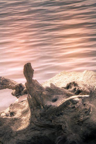 La sirène du lac du Crescent