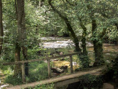Eaux vives Morvandelles : Le Cousin vers Avallon (4)
