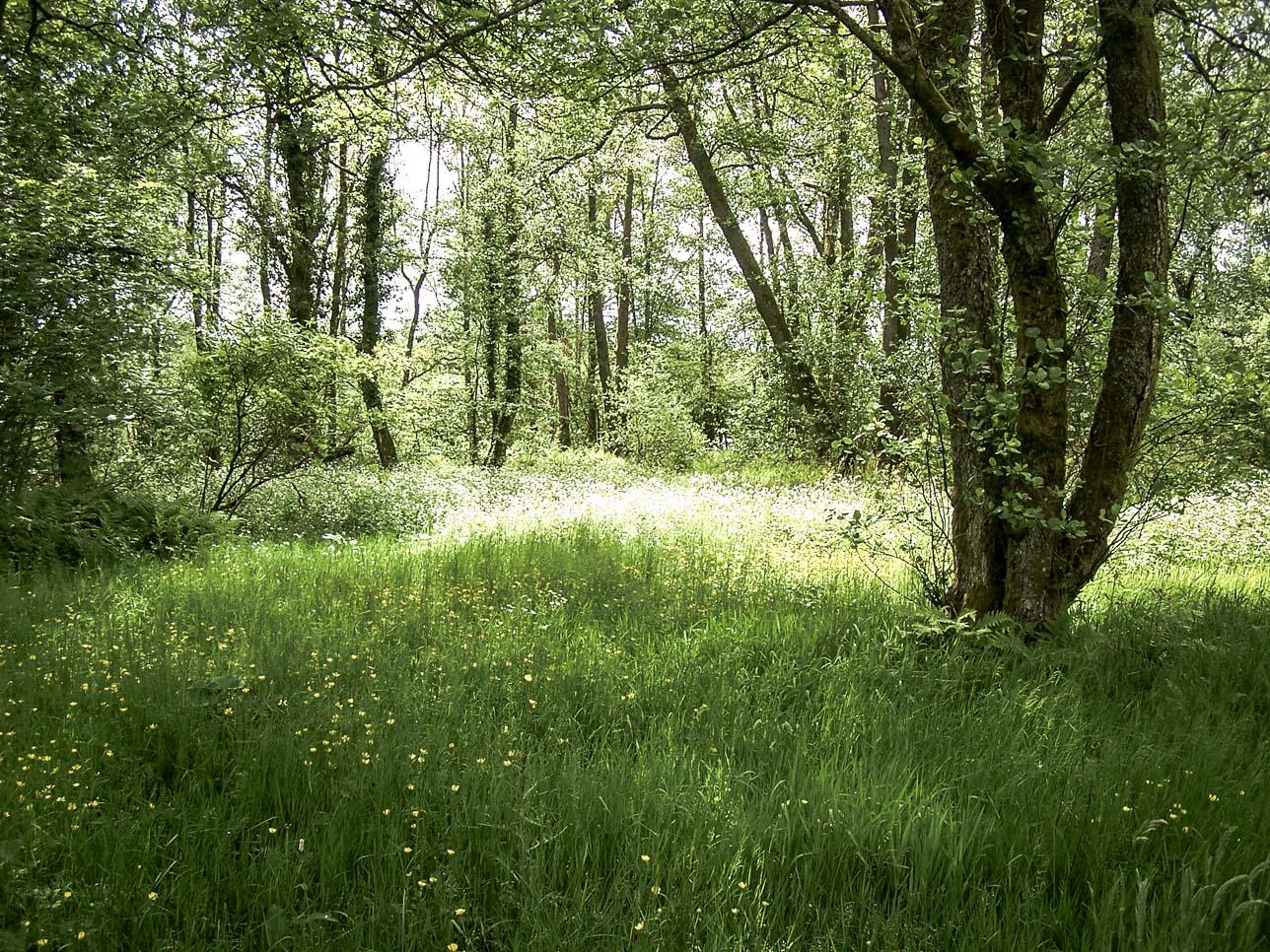 Paysages du Morvan : Saint Brisson Maison du Parc (2)