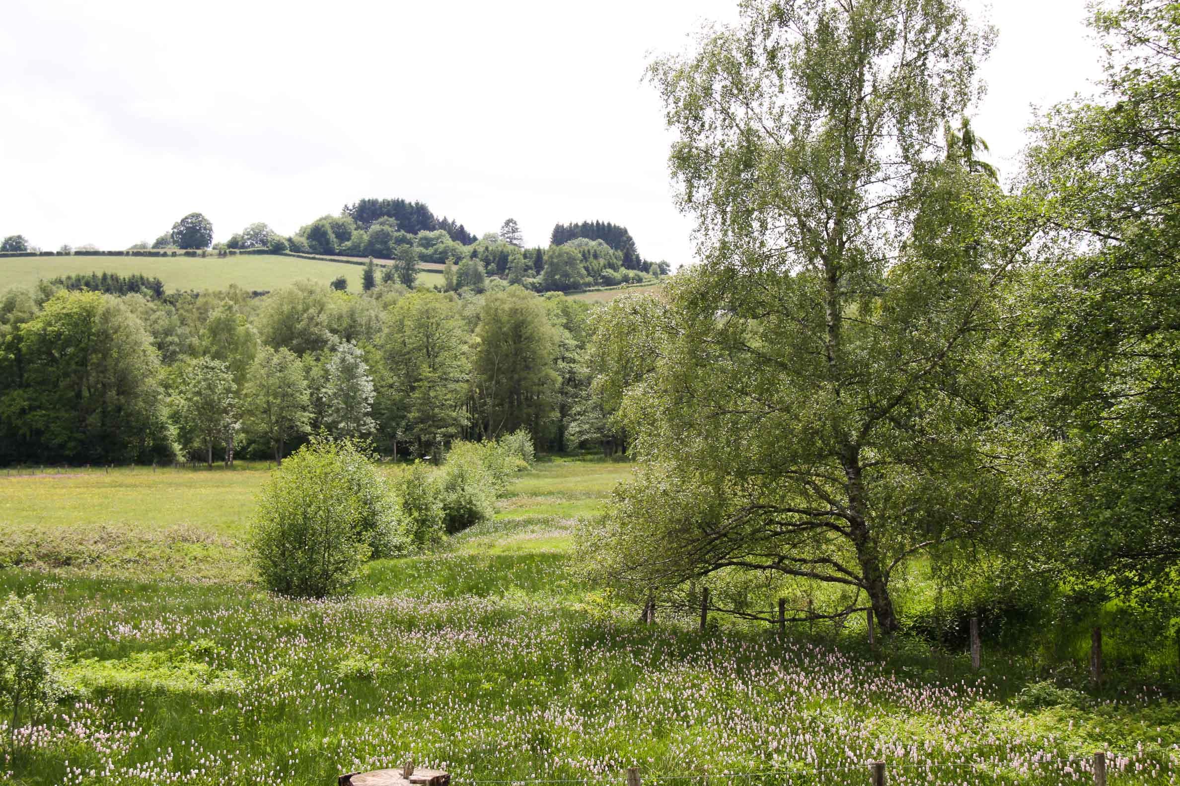 Paysages du Morvan : Saint Brisson Maison du Parc (3)