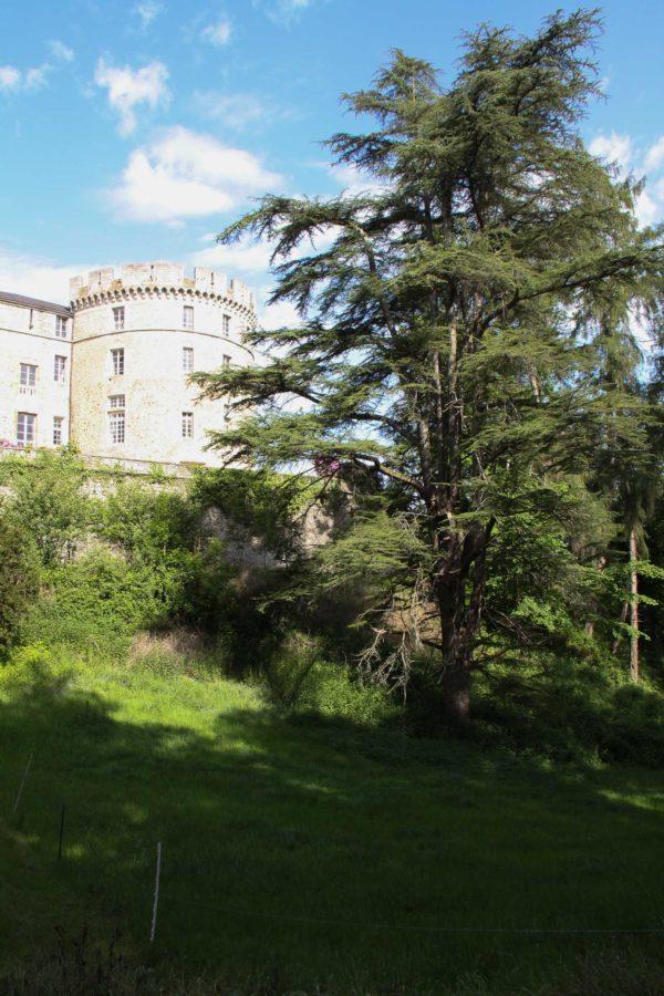 patrimoine bâti du Morvan : Château de Chastellux-sur-Cure (7)