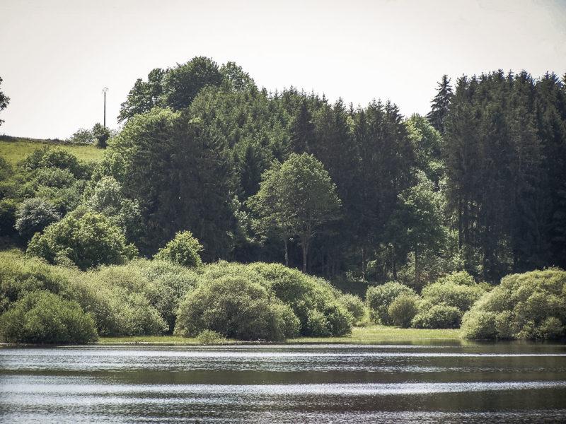 La queue du lac de Chaumeçon, à gauche en allant vers Lormes