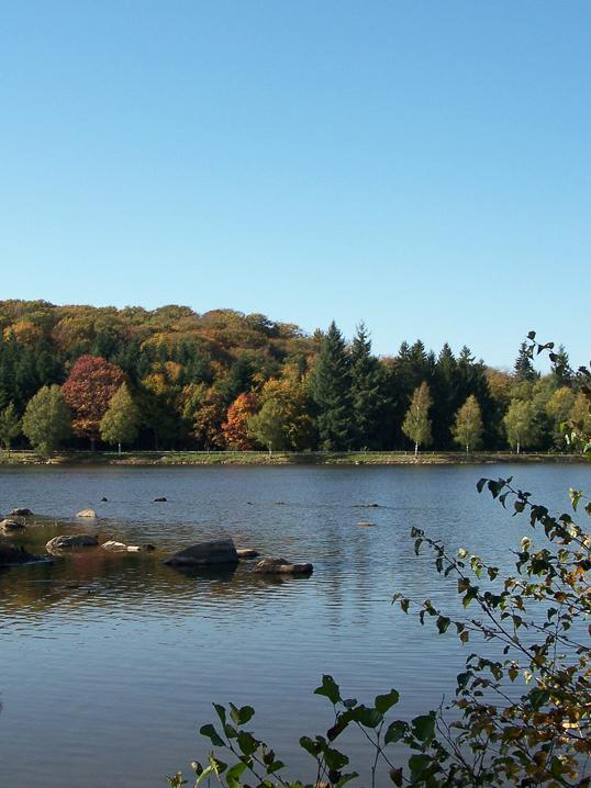 autres plans d'eau remarquables : Réservoir du Griottier Blanc octobre 2017 (6)