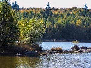 Morvan : Réservoir du Griottier Blanc