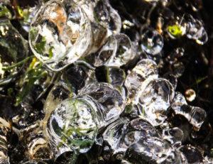 Macro photo dans le Morvan : goutes d'eau gelées