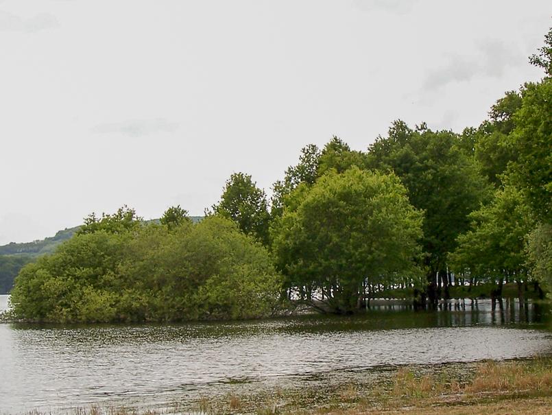 Lac de Pannecière printemps 2017 près de Bonnin