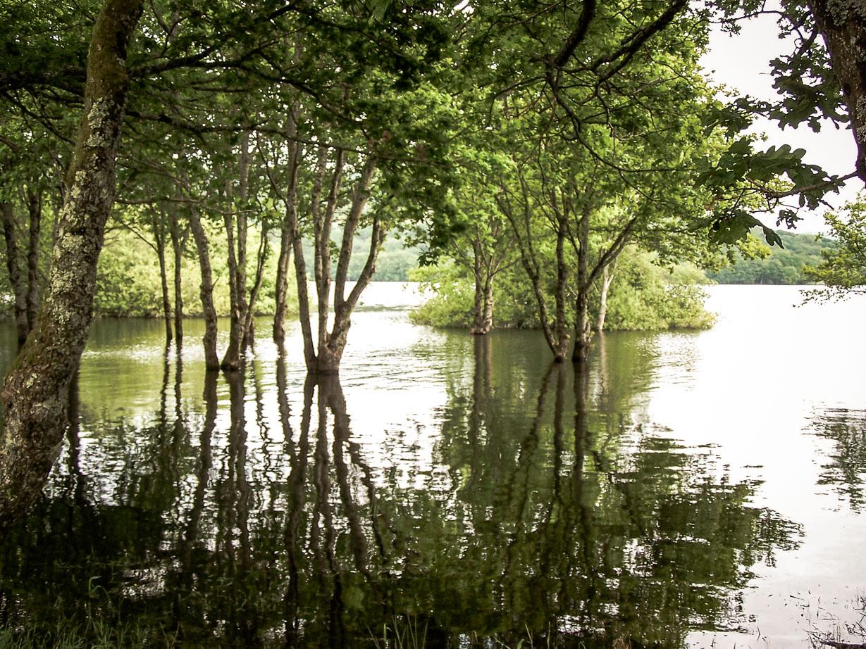 Lac de Pannecière les berges inondées