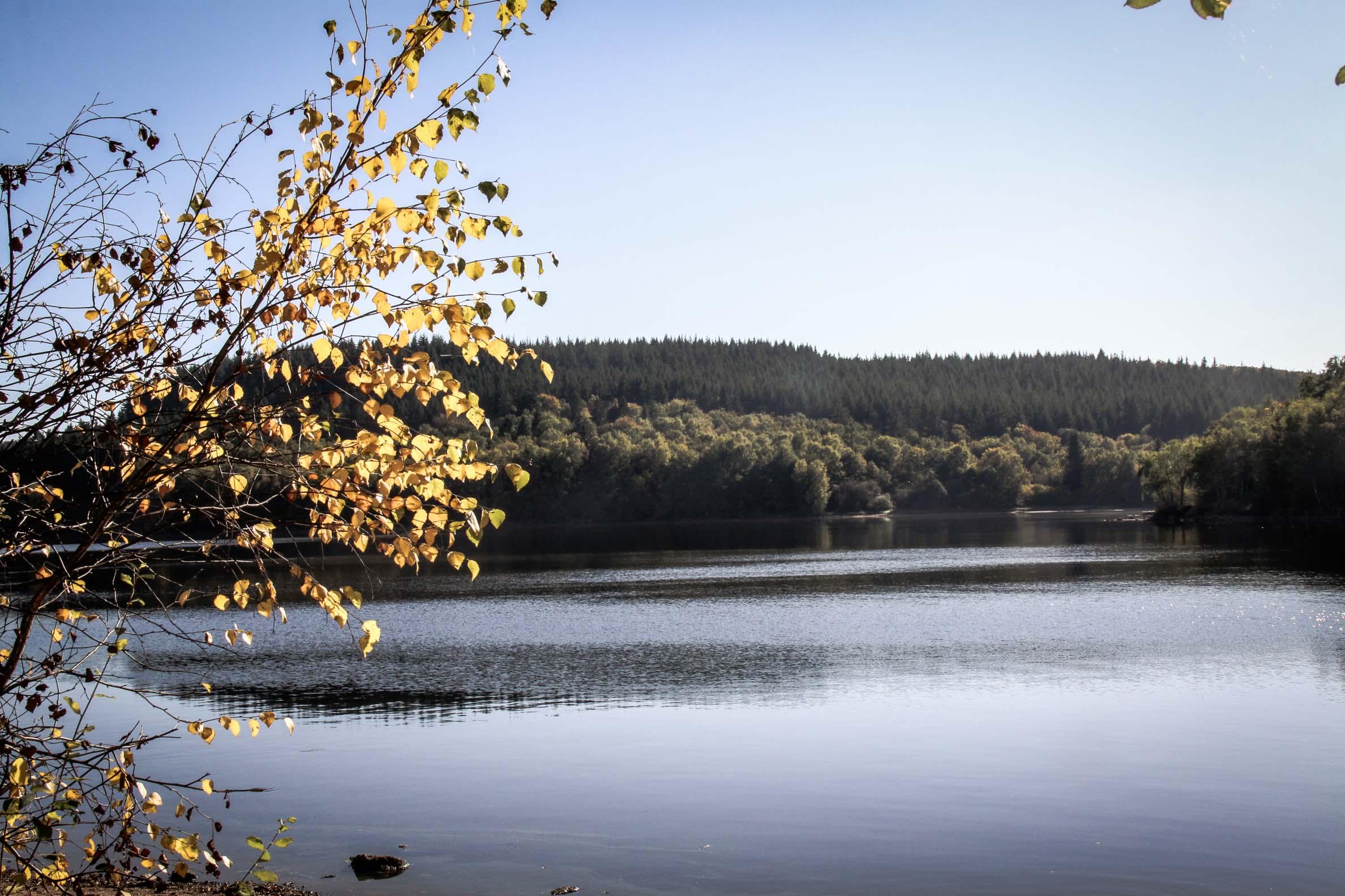 Lac de Saint-Agnan octobre 2017 sur le sentier autour du lac
