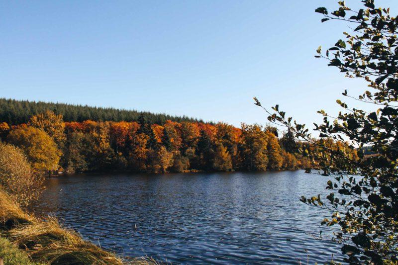 Lac de Saint -Agnan octobre 2017 sur la D226 : étang de la Chevrée