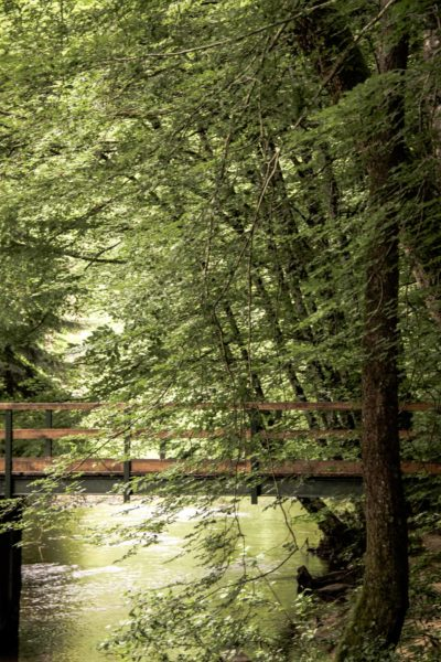 Eaux vives Morvandelles : vallée du Cousin à Avallon (3)