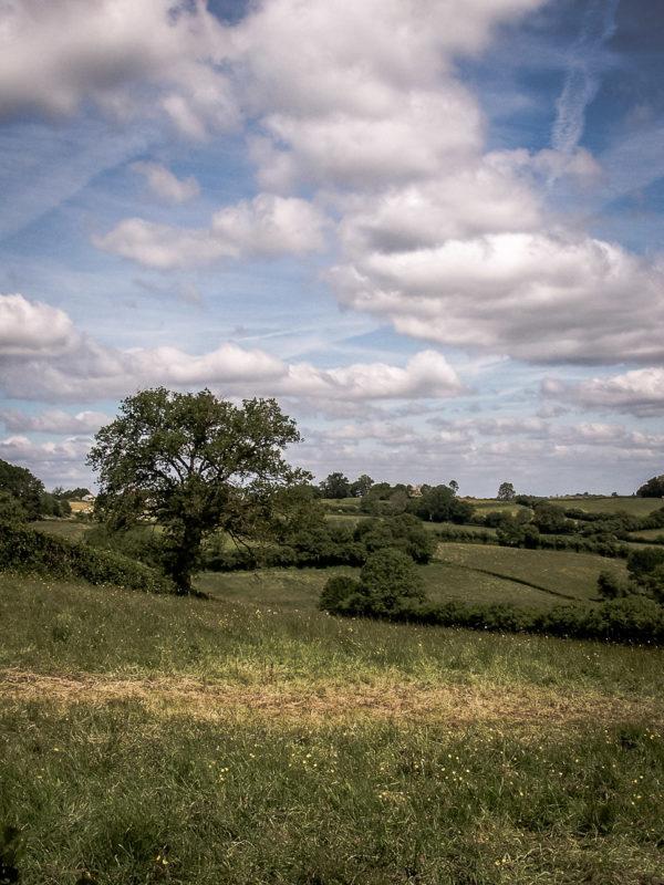 Paysages du Morvan : Du côté de Quarré-LesTombes (2)